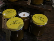 Pine Tree Candles